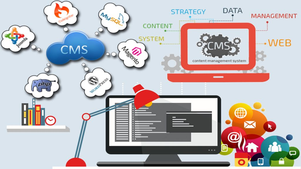 content_management_system_expertise